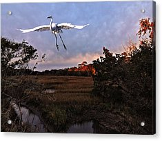 Acrylic Print featuring the photograph Taking Flight by Laura Ragland