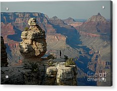 Acrylic Print featuring the photograph Taking It All In by Nick  Boren