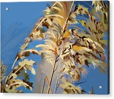 Acrylic Print featuring the digital art Tall Grass Mix by Anthony Fishburne