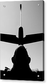 Acrylic Print featuring the photograph Tall Tail - B-1b/7 Wishes by Steven Milner