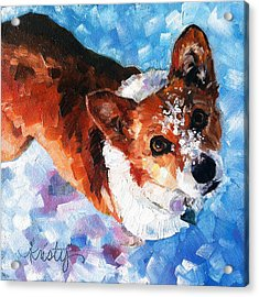 Tally In The Snow Acrylic Print by Kristy Tracy