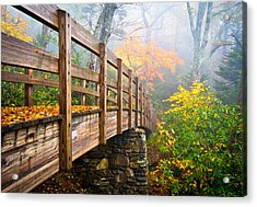 Tanawha Trail Foot Bridge - Rough Ridge Autumn Foliage Nc Acrylic Print