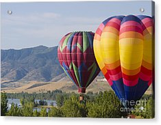 Tandem Balloons Acrylic Print