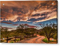 Tangerine Dream Acrylic Print by Beverly Parks