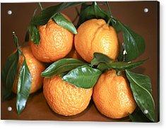 Oranges Acrylic Print by Michael Riley