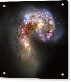 Tangled Galaxies Acrylic Print
