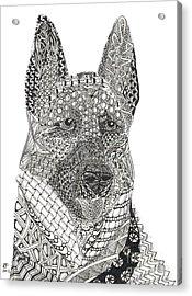 Tangled German Shepherd Acrylic Print