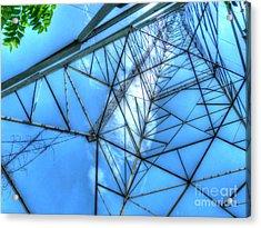 Tangled Web Acrylic Print by MJ Olsen
