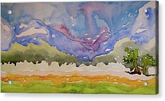 Acrylic Print featuring the painting Taos Fields by Beverley Harper Tinsley