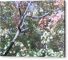 Tapestry Of Leaves 1 Acrylic Print by Gayle Price Thomas