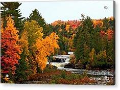 Taquamenon Falls Acrylic Print by Dipali S