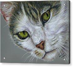 Tara Cat Art Acrylic Print