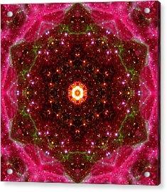 Tarantula Nebula IIi Acrylic Print