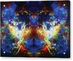 Tarantula Reflection 2 Acrylic Print by Jennifer Rondinelli Reilly - Fine Art Photography
