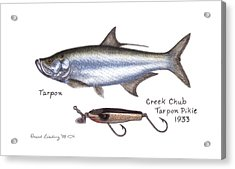 Tarpon And Creek Chub Tarpon Lure 1933 Acrylic Print by Daniel Lindvig