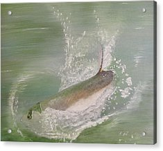 Tarpon Breaking Water Acrylic Print