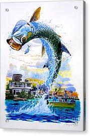 Tarpon Leap Acrylic Print by Carey Chen