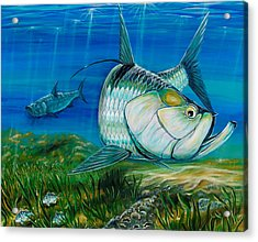 Acrylic Print featuring the painting Tarpon On The Flats by Steve Ozment