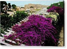 Tarragona Roman Amphitheater Acrylic Print by Jacqueline M Lewis