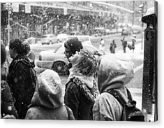 Acrylic Print featuring the photograph Tasteofsnow by Dave Beckerman