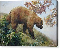 Tasty Raspberries For Our Bear Acrylic Print by Svitozar Nenyuk
