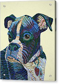 Tater - Portrait Of A Boxer Acrylic Print