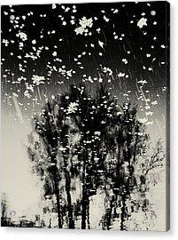 tathata #12NULLUS2 Acrylic Print by Alex Zhul