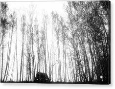 tathata #19NULLUS2 Acrylic Print by Alex Zhul