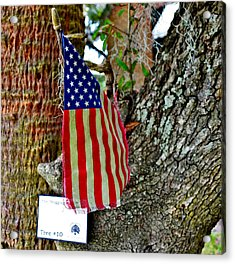 Tattered America Acrylic Print by Patricia Greer