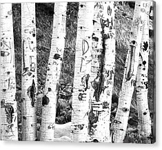 Tattoo Trees Acrylic Print