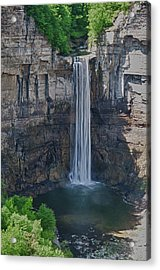 Taughannock Falls  0453 Acrylic Print by Guy Whiteley