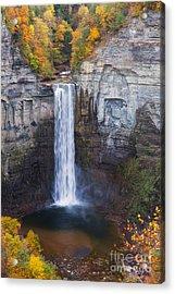 Taughannock Falls In Autumn Acrylic Print