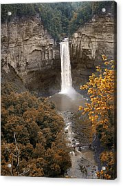 Taughannock Falls Park Acrylic Print by Jessica Jenney