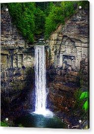 Taughannock Falls Ulysses Ny Acrylic Print by Tim Buisman