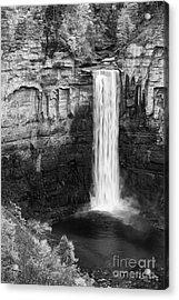 Taughannock Monochrome II Acrylic Print