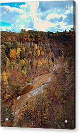 Acrylic Print featuring the painting Taughannock River Canyon In Colorful Fall Ithaca New York V by Paul Ge