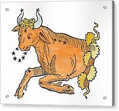 Taurus An Illustration Acrylic Print by Italian School