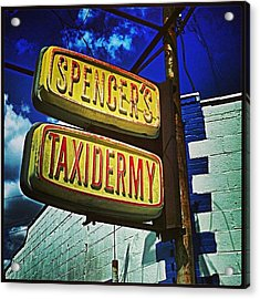 Taxidermist Metairie Louisiana Acrylic Print