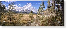 Acrylic Print featuring the photograph Taylor Creek Panorama by Jim Thompson