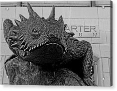 Tcu Horned Frog Black And White Acrylic Print