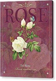 Tea Rose Acrylic Print by Tammy Apple