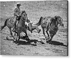 Team Roping Acrylic Print by Dianne Arrigoni