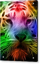Techicolor Tiger Acrylic Print by Ricky Barnard