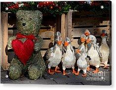 Teddy Bear With Flock Of Stuffed Ducks Acrylic Print by Imran Ahmed