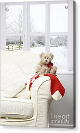 Teddy Sitting On Chair Acrylic Print by Amanda Elwell
