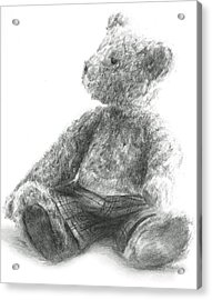 Acrylic Print featuring the drawing Teddy Study by Meagan  Visser