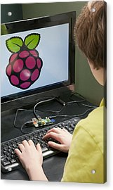 Teenager Using A Raspberry Pi Acrylic Print by Science Photo Library