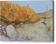 Tejas Creek Experiment - 7 Acrylic Print