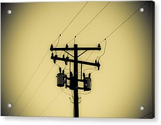 Telephone Pole 1 Acrylic Print