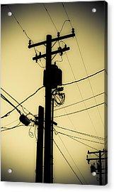 Telephone Pole 2 Acrylic Print